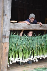 Joe's Brook Farm